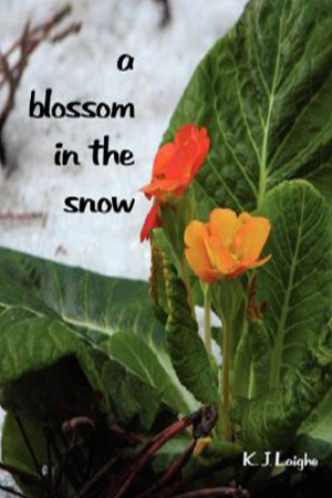 A Blossom in the Snow